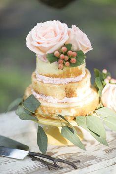 Elegant pastel cake