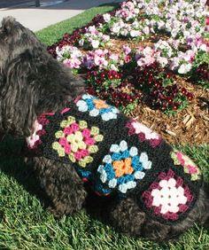 Dog Granny Square Coat