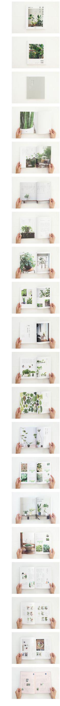 beautiful magazine layout
