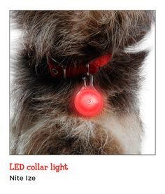 Keep your dog safe during winter walks with the Nite Ize LED collar light, which features a steady glow or continuous flash.