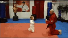 DIVERT YOUR ATTENTION TO THIS BLACK BELT: | 19 GIFs That Will Help Us Achieve World Peace