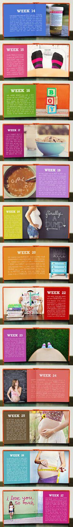 cute maternity book documenting each week