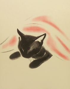 'Sheba the Black Cat' by Clare Turlay Newberry