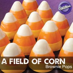 Sow bushel baskets' worth of grins. Use buttercream icing and melted candy to turn Round Brownie Pops brownies into so-cute candy corn bites.