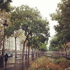 #paris - via @davidlebovitz on instagram