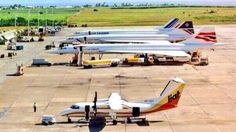 Concordes