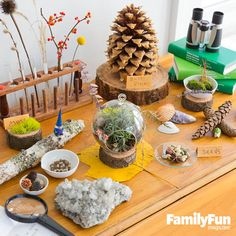 Invite Nature In: Children love to bring home rocks and seashells. Nurture that impulse by dedicating a spot to a mini nature museum.