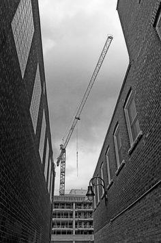 Crane in an Alley