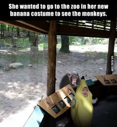The monkey and the little girl's face are both priceless.