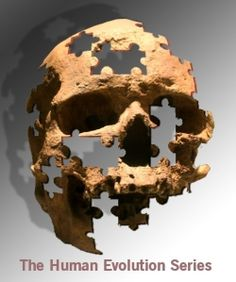 Last Common Ancestor of Neanderthals and Modern Humans Still a Mystery