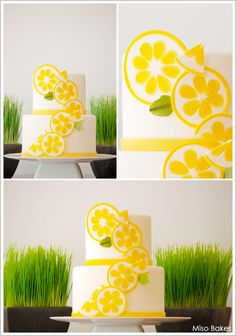 Lemon Citrus Cake by Miso Bakes     TheCakeBlog.com