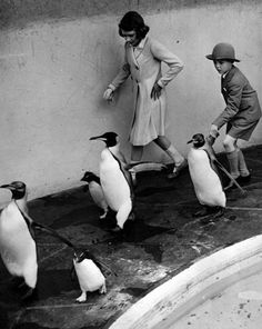 Princess Elizabeth and a friend take the London Zoo's penguins for a walk on June 30, 1938.