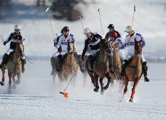St. Moritz Polo : World Cup News
