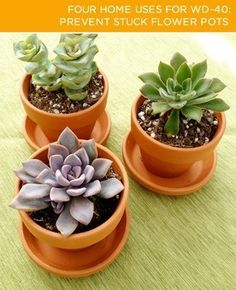 Prevent flower pots from sticking together in storage with a light spray of WD-40 - doesn't affect the color of the pot!