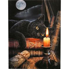Witching Hour Canvas