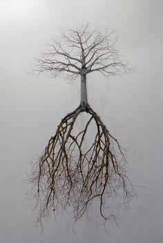 Roots...run deep