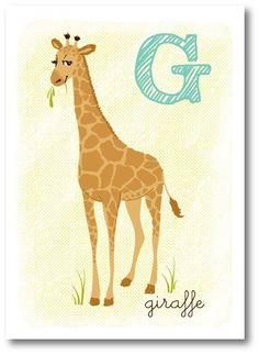 G is for giraffe @Ben Silbermann Silbermann Ailes