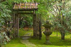 Asian Garden Inspiration