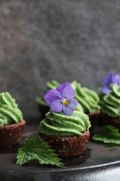 Raw Chocolate Cupcak