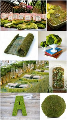 If you decide to use moss I LOVE the moss letter!