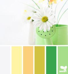find the color palette you like mint green, color palettes, design seeds, color schemes, spring colors, spring hue, happy colors, happi color, mustard yellow