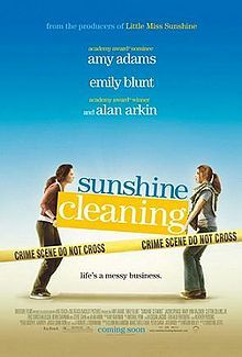 One of my favorites. This movie has a fabulous cast of Amy Adams, Emily Blunt and Alan Arkin. It's about two very different sisters who go into business together in a crime scene/biohazard clean up company. It's funny and sad and sweet, and a must see.