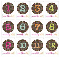 Free Monthly Baby Picture Printables | Pretty Darn Cute Design
