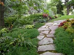 Ideas for pathways | garden pathway with dashes of color