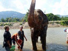 Two Week Vacation? No Problem! - Thailand - WorldNomads.com