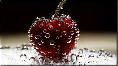 Cherry Macro Photography