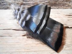 The DOWNTON ABBEY Collection.Boutonniere Black Tie Fly by TieFly, $39.99