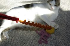 Squiggly crochet cat toy.