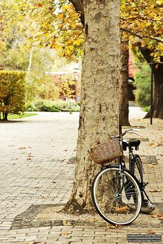 Spend a Saturday on an autumn bike ride.