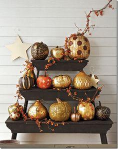 Pumpkins, pumpkins!! #FallIntoAutumn