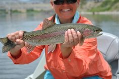 Montana favorit place, trout fish, favorit thing, rainbow trout, fish fun