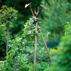 And easy DIY - recycled garden tool trellis.