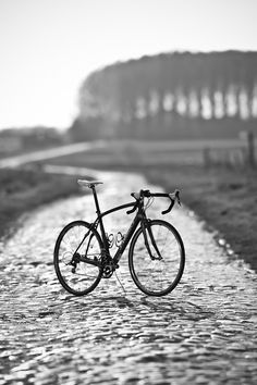 Paris Roubaix 2011 | VeloDramatic Photography