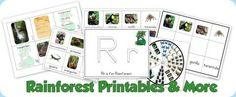 rainforest printable