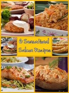 Attention all salmon fans: our collection of 6 easy seafood recipes are swimmin' your way this summer!