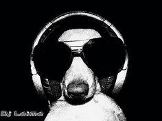 Friday=DJ dachshund time