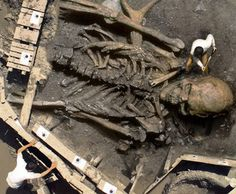 Giants Humans Skeletons Found All Over The World~Video