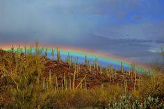 Rainbow - Sonoran Desert, Tucson, Arizona