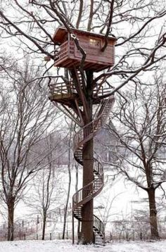 Architecture - Tree Houses