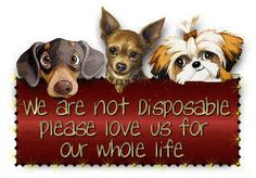 They are not disposable.