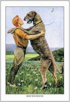 Vintage Irish Wolfhound