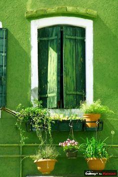 a beautiful green.....