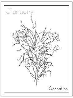 Birthday Flowers coloring pages to learn  and write the the MONTHS of the year.  Links to print calendar, and information to view and learn about the flowers. printabl
