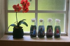 glass jar picture frames