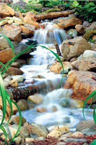 I would love a mini waterfall in my backyard... I love waterfalls anyway..