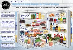 Where things go in your fridge